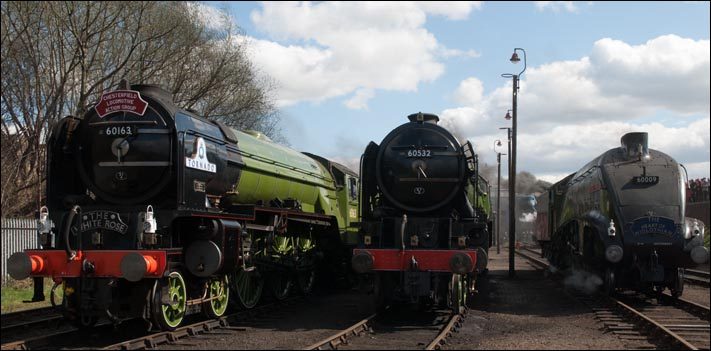 LNER A1 60163 Tornado and A2 60532 Blue Peter and A4 60009 Union of South Africa all lined up at Barrow Hill