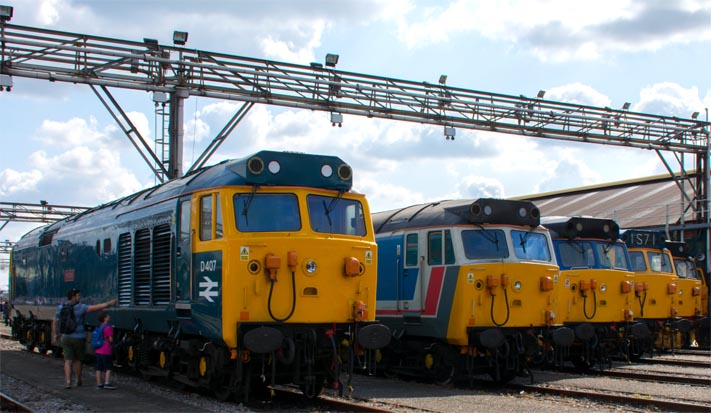 Class 50s lined up at the Old Oak Comon open day