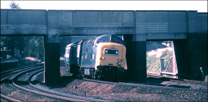 A Class 55 Deltic on the down fast comes under Peacock bridge