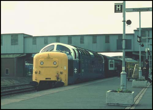 Deltic Class 55003 in platform 4 at Peterborough on a down train