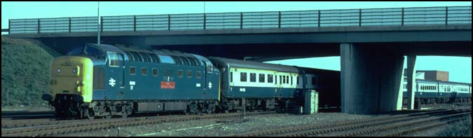 Class 55 Deltic on a down train under the A47 road bridge at Walton in Peterborough