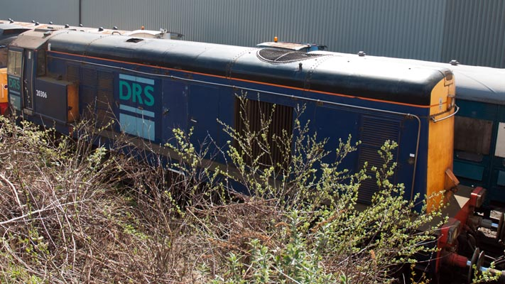 DRS class 20306 at Barrow Hill